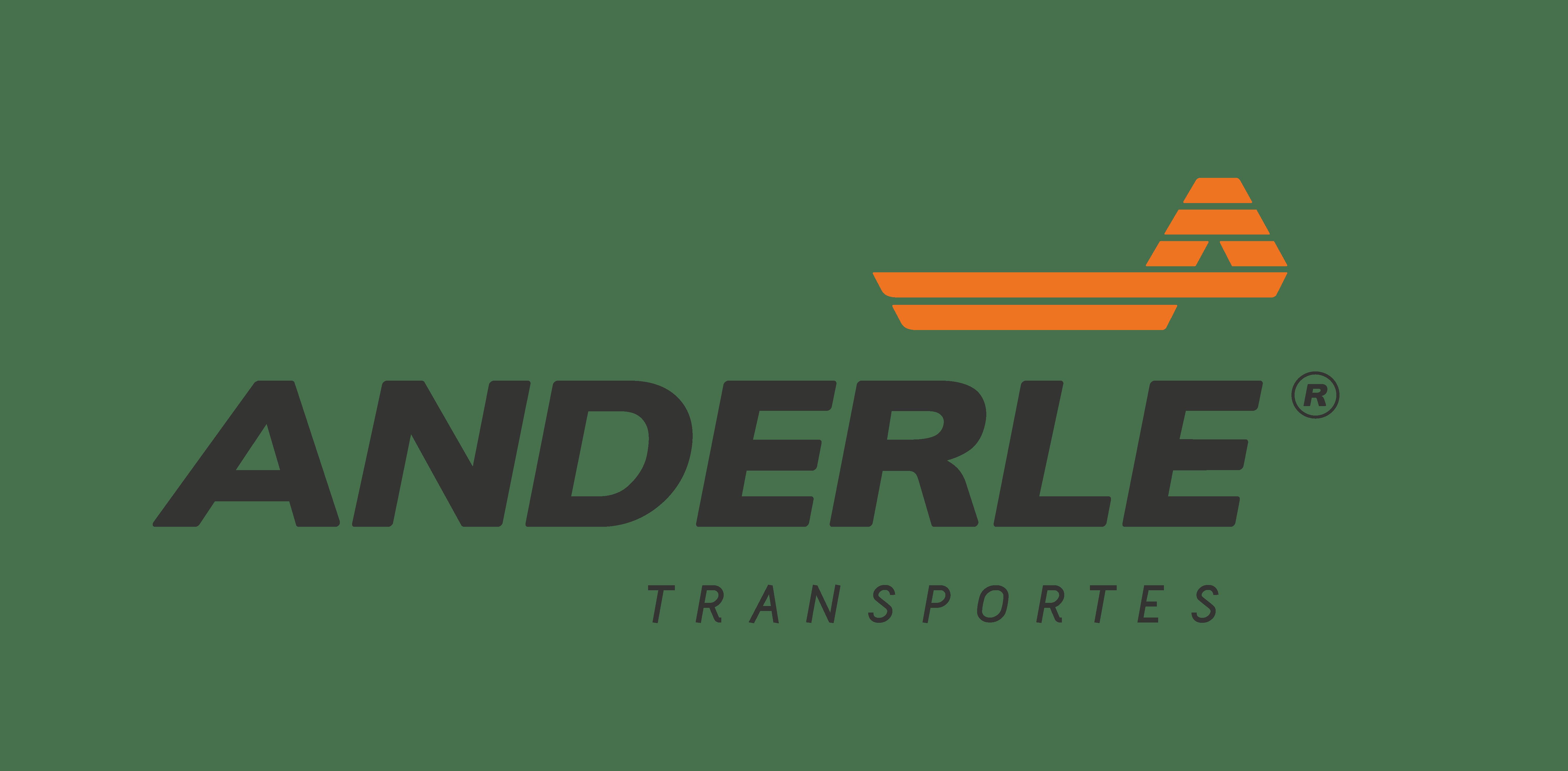 video_explainer_anderle_transportes_Page_1